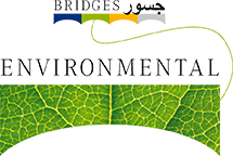 Bridges Environmental Services LLC