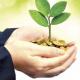 PRO Partner Group Capital Companies Go Green Ramadan 2016
