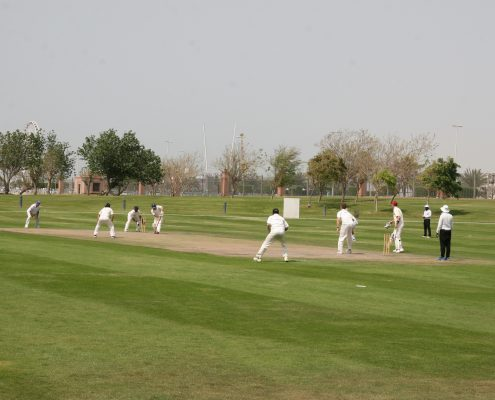 PRO Partner Group cricket match against Abu Dhabi Gentlemen