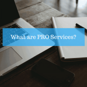 What are PRO services or Government Liaison Officer in the UAE