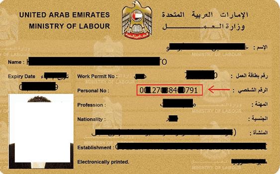 WPS Employee Labour Dubai Abu Dhabi